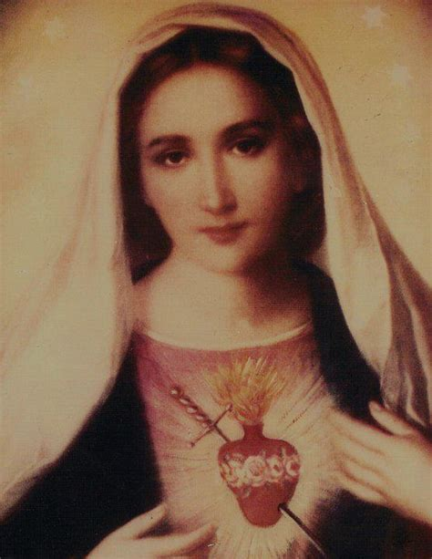 immaculate heart of mary on devotion to the immaculate heart of mary