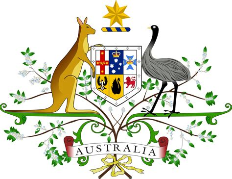 the wattle australia s national floral emblem