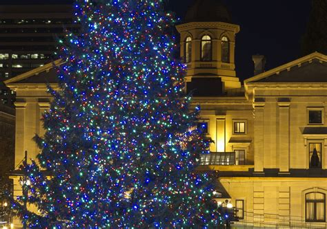 portland maine tree lighting 2017 portland oregon lights 2017 decoratingspecial com