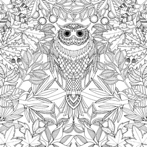 secret garden coloring book color pages secret garden johanna basford coloring book coloring page