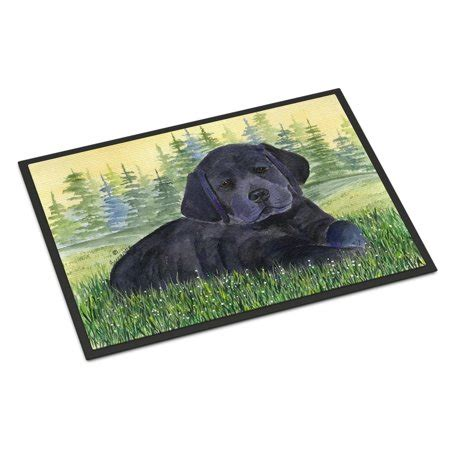 Labrador Doormat by Labrador Indoor Outdoor Mat 18x27 Doormat Walmart