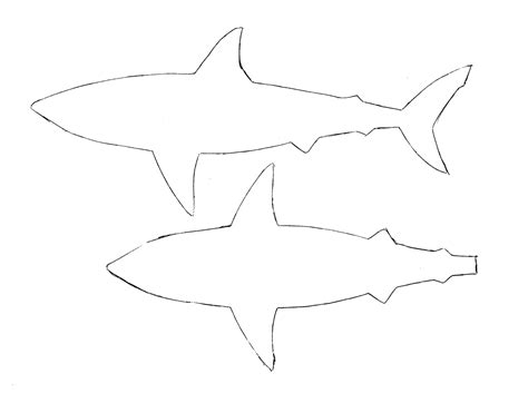 the gallery for gt simple shark outline