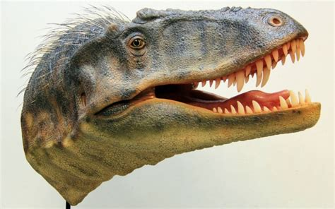 Find In Utah Dinosaur That Predates Tyrannosaurus Rex Unveiled In Utah Al Jazeera America