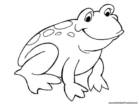 Frog Coloring Page For Preschool | free coloring pages of frog outline