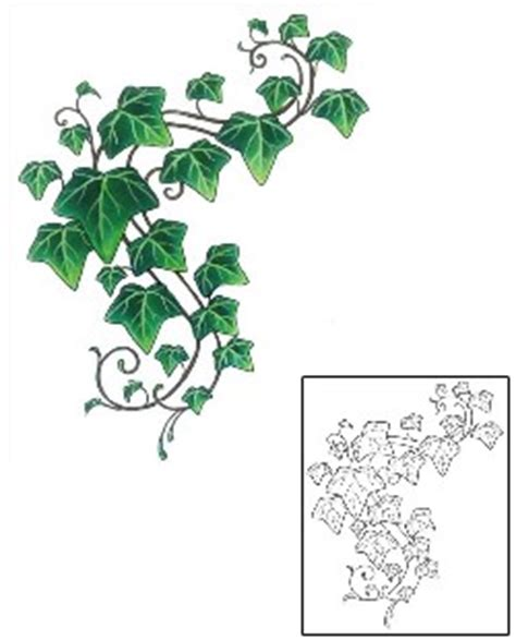 poison ivy tattoo designs and vine tattoos and designs