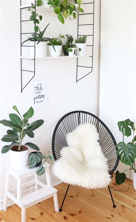 Schlafzimmer Jungle by 1000 Ideas About Jungle Bedroom On Bedroom