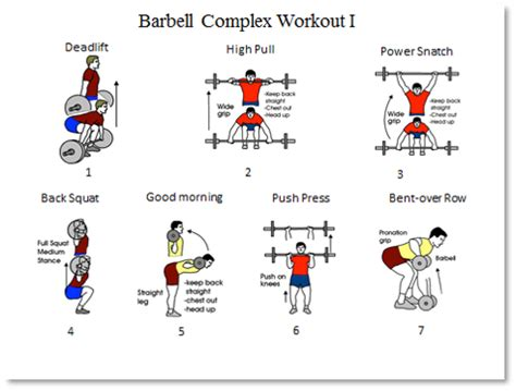 barbell complex barbell and dumbbell workout routine pdf eoua