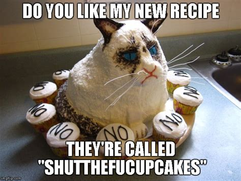 Cupcake Meme - grumpy cat strikes again imgflip