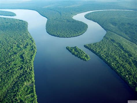 amazonas hängestuhl utaz 225 s negro foly 243 amazonas k 233 p