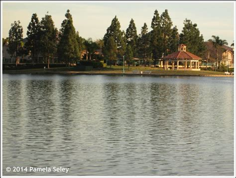 houses for sale in menifee ca menifee lakes menifee ca homes for sale menifee lakes menifee ca real estate