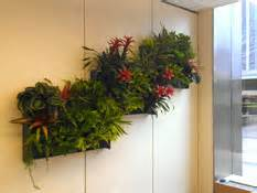 Interior Plantscapes Installation Maintenance And Management by The Plant Interior Landscaping And Indoor Plant