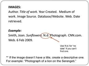 citing websites apa style with no author in text sle