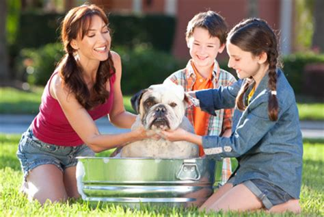 tips for raising a puppy curb your expenses with these tips on raising a