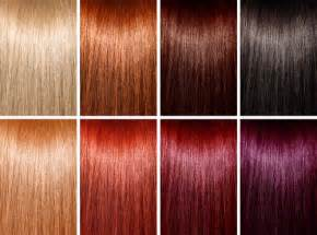 types of hair color different types of hair coloring styles for indian
