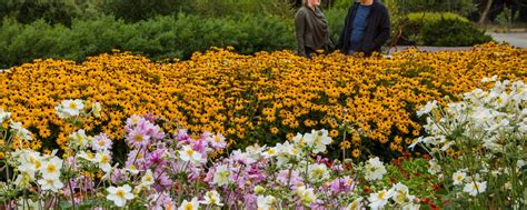 Humboldt Botanical Gardens Donate Humboldt Botanical Garden