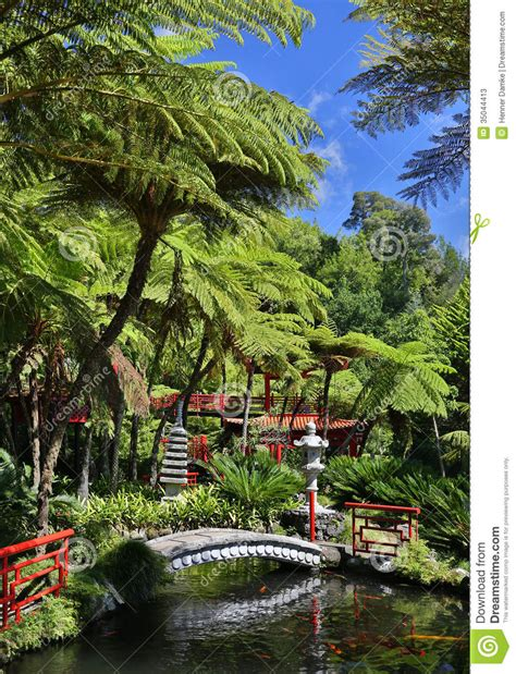 Japanese Style House Plans Tropical Garden In Funchal Madeira Portugal Stock