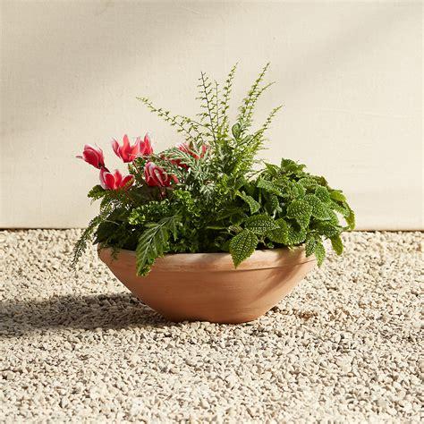 Terracotta Bowl Planter by K 248 Benler Terracotta Bowl Planter Terrain