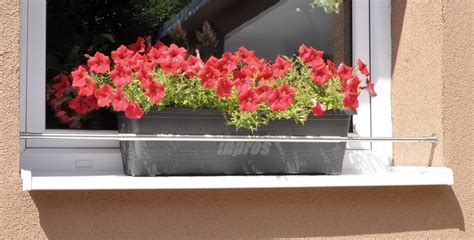 Breite Fensterbank by Wie Befestigt Einen Blumenkasten Sicher Auf Der