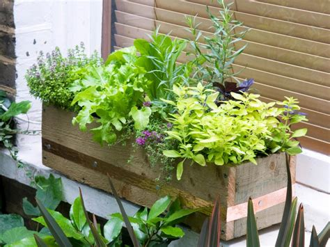 window box garden vegetables window box edibles hgtv