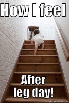 After Leg Day Meme - after leg day quickmeme
