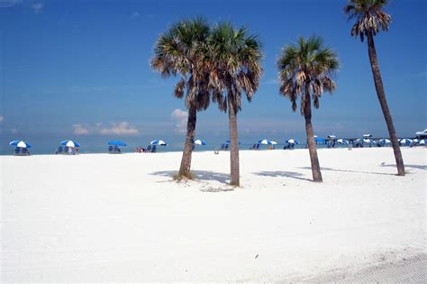 beaches in florida clearwater