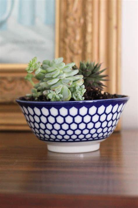 indoor planter ideas creative indoor planter ideas for your apartment rent
