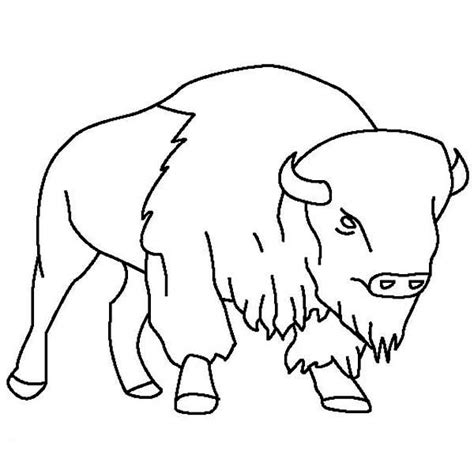Bison Free Coloring Pages Bison Coloring Pages