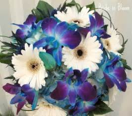 Displaying 18 gt images for blue gerber daisy