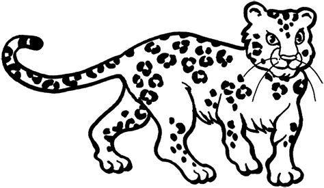 Leopard Print Coloring Pages free coloring pages of leopard baby