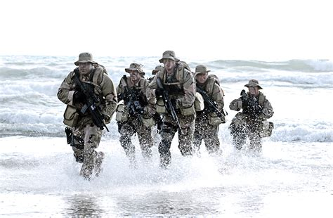 the sea l nsw gallery navy seals