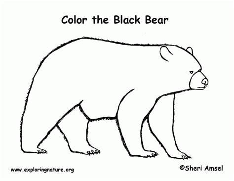 coloring pages black bears american black bear coloring page az coloring pages
