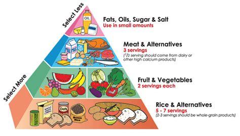 better food pyramid food knowledge