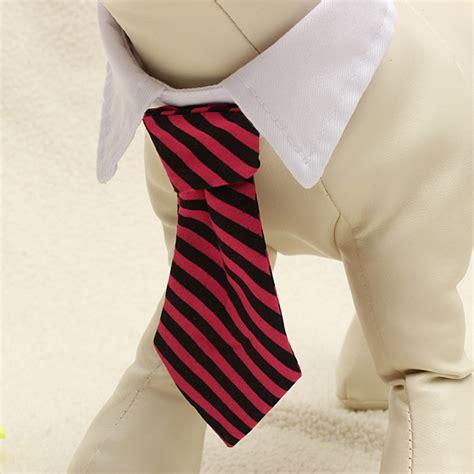 Cat Adjustable Collar Coffee buy pet adjustable cat tie wedding tuxedo fancy dress