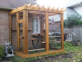 wooden cat enclosure with real tree cat tower maureen