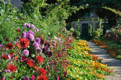 giverny flowing flowers