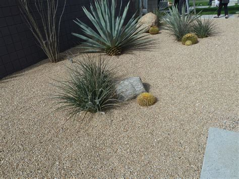 drought friendly landscaping drought resistant