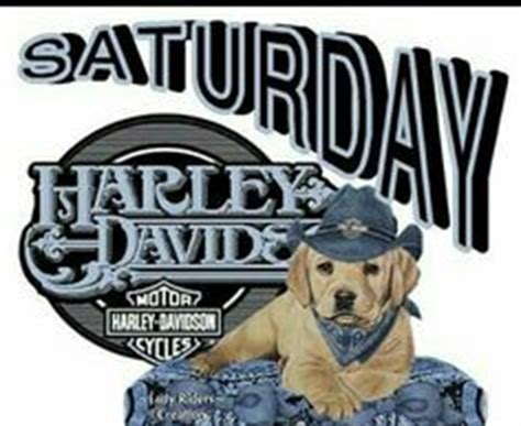 1000+ images about harley memes toons & biker sayings on