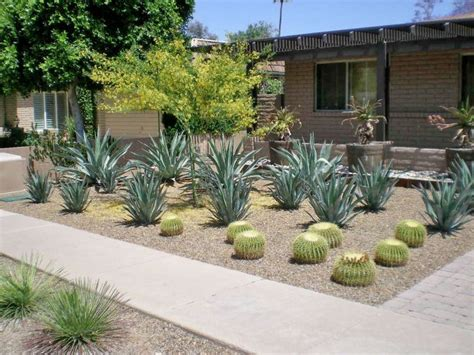 backyard desert landscaping 10 images about modern desert landscaping on pinterest mid century modern cactus
