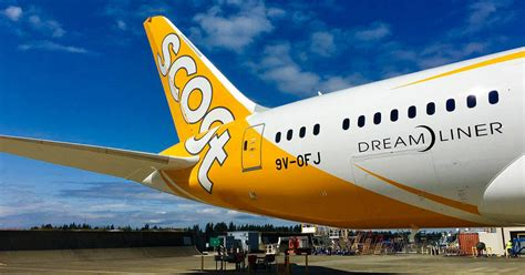 scoot  offering pay   return   flight offers  youve  midnight  book