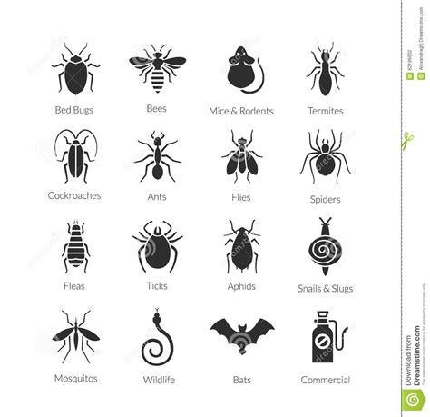 vector set  icons  insects  pest control company