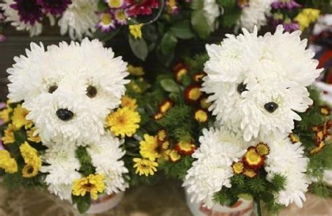 puppy flowers flowers flower arrangements made in the shape of dogs the guide