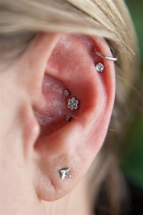 7 Parts I Like To See Pierced by Best 25 Inner Conch Piercing Ideas On Outer