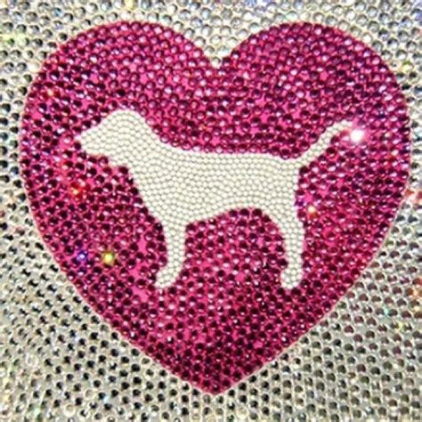 pink s dogs s secret pink assez dans le pretty in pin