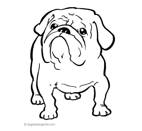 bulldogs coloring page english bulldog clipart coloring page pencil and in