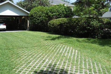 Patio Pavers Tallahassee Low Impact Yards Tallahassee Community Blogs