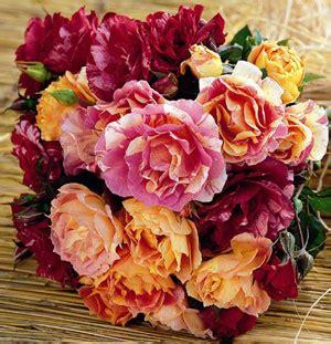 quadri con fiori di pittori famosi fiori come quadri ecco le dei pittori fiori e foglie