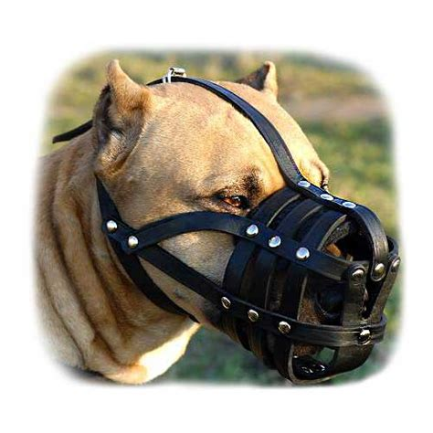 muzzle for pitbull padded leather ventilation muzzle for pitbull m41r 1077 nappa padded leather