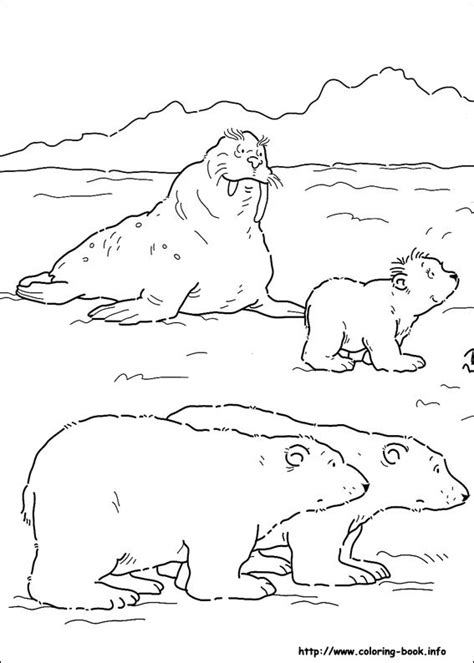 coloring book pages info polar coloring picture