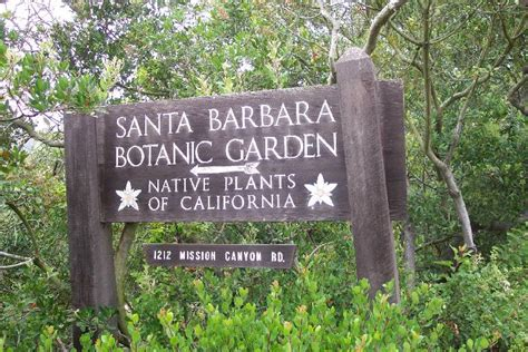 santa barbara botanic garden letsgoseeit