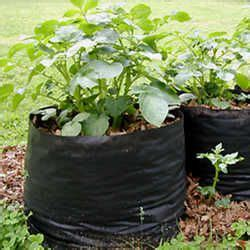 Landscape Fabric Pots Tater Totes Diy Fabric Pots For Potatoes Other Plants